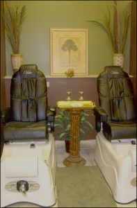 Performance Salon & Color Spa - 18 Ronnies Plaza, St. Louis, MO 63126 - (314) 843-4247